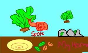 spots the snail 1